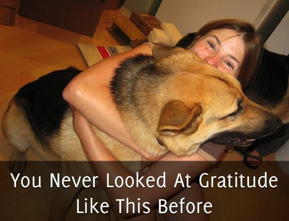 You Never Looked At Gratitude Like This Before